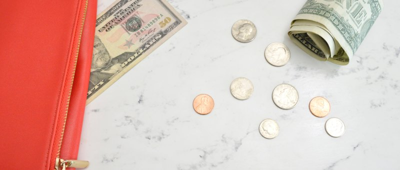 wallet and money for budgeting