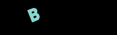 budget bible logo