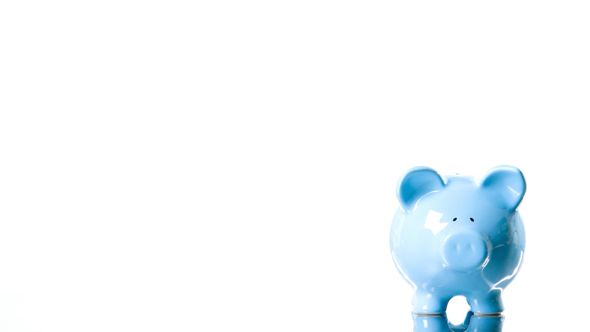 piggy bank for budget bible website